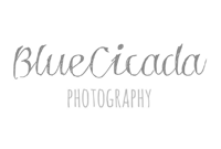 7_bluecicada